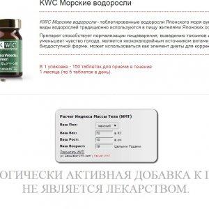 www.kwc-japan.ru